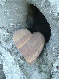 Corazón vaginal